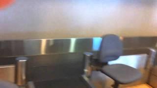 Аэропорт регистрация котенок