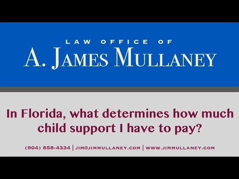 In Florida, what determines how much child support I have to pay?