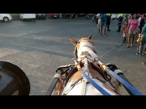 Road trip 1:Horse carriage riding at Vigan (blacklist)
