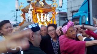 土浦市神立会さんのお神輿にお邪魔してきたよ!