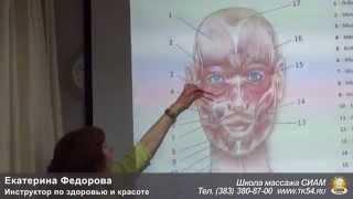 Е. Федорова - Гимнастика для лица  Здоровье изнутри