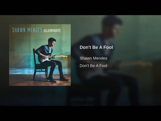 shawn-mendes-dont-be-a-fool-audio-hilton-leal