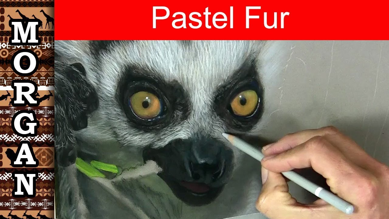 drawing painting fur details pastel pencils jason morgan youtube