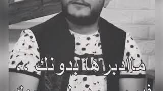 شلون انام الليل ؟ قصي باسل