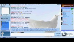 Viewing Video Camera in a Gchat Video Chat Room