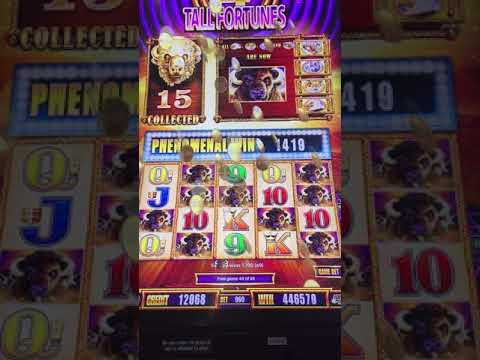 New online casino 1250 slot spiele gratis downloaden