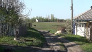 Прогулка по Поворино - 2013.