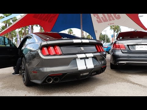 Shelby GT350 Test Drive + Car Shopping