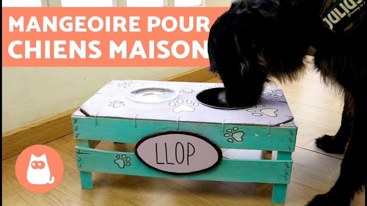 Lit Pour Chien Palette diy -fabriquer un porte-gamelle pour chiens en bois