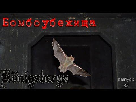 Бомбоубежища Кёнигсберга. Подземелья Кёнигсберга.  (выпуск 30)