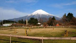 Wire Fox Terrier nana's first trip to Mt.Fuji. It's the highest and...
