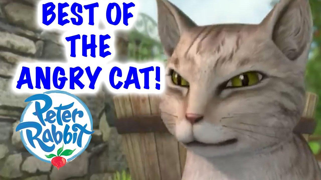 Peter Rabbit - Best of Mr McGregor's Angry Cat! | Cartoons for Kids