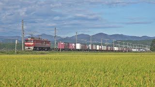 電気機関車EH800(28) ~交交セクション通過! 秋晴れの津軽線のロングストレートを行く~