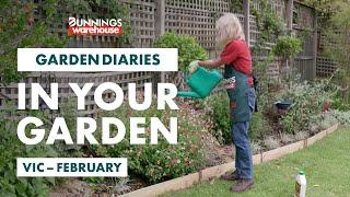 Gardening in February | Victoria | Bunnings Garden Diary