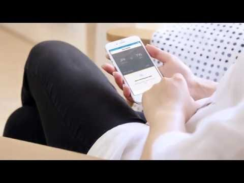 Flight delay? See how the AirHelp app helps you file a claim for compensation
