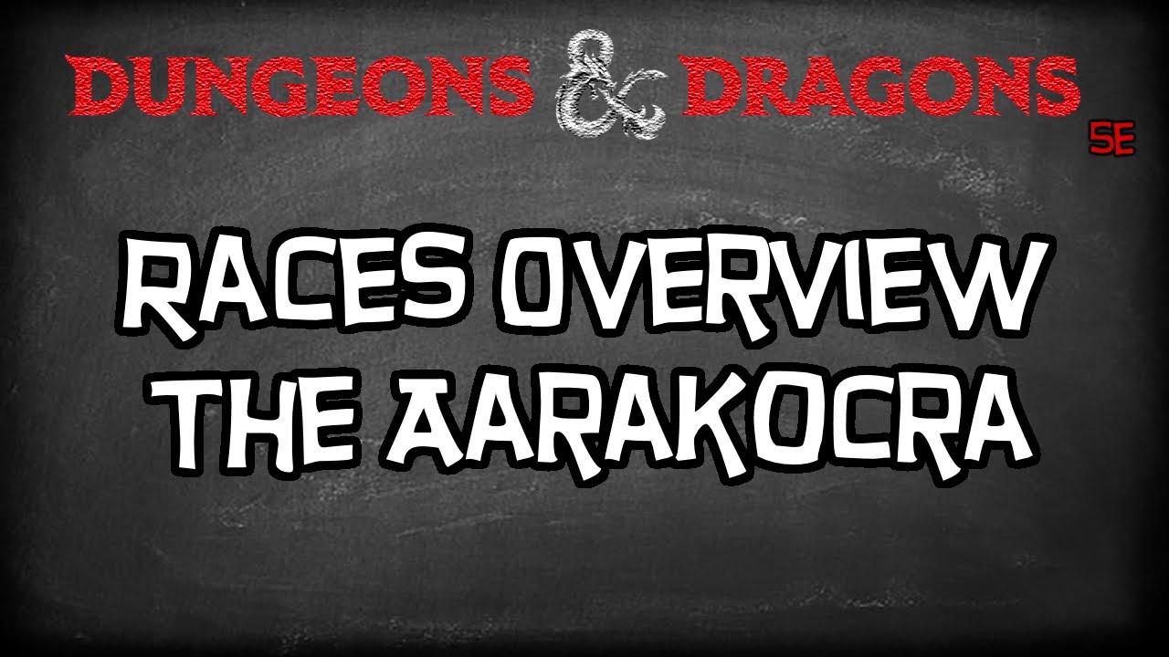 Dungeons & Dragons 5e Races Tutorial `The Aarakocra`