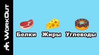 Из чего состоит еда? Функции пищи (БЕЛКИ, ЖИРЫ, УГЛЕВОДЫ) | SOTKA - День 9