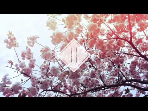 Nujabes - Feather (Citylights remix)