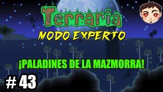 Terraria [T4] Ep. 43 - ¡PALADINES DE LA MAZMORRA!