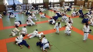 Judo camp at Kodokan after Tokyo Grand Slam Newaza randori
