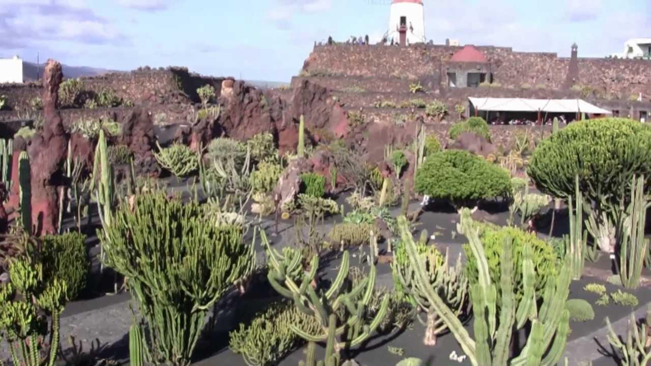 the jardin de cactus lanzarote