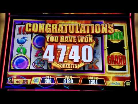 Wicked Winnings II & Miss Kitty Gold Slot Machine Bonus Win Compilation !!!!! - 동영상