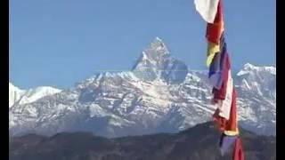 Nepal live video ID Thapa UAE