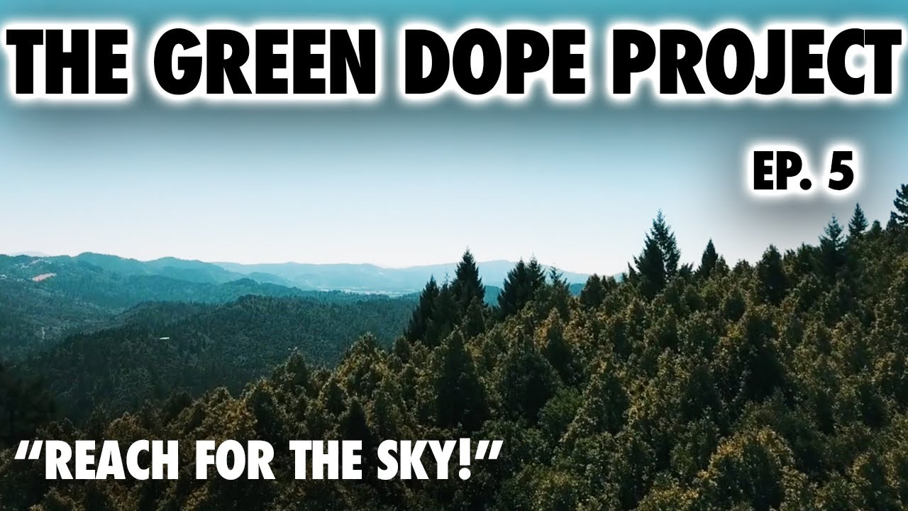 "THE GREEN DOPE PROJECT SEASON 3 EP. 5 ""REACH FOR THE SKY""  