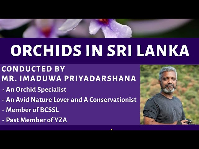YZA Public Lecture (15th August 2020) - Part 1
