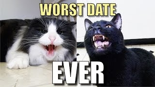 Repeat youtube video Talking Kitty Cat 38 - Worst Date Ever