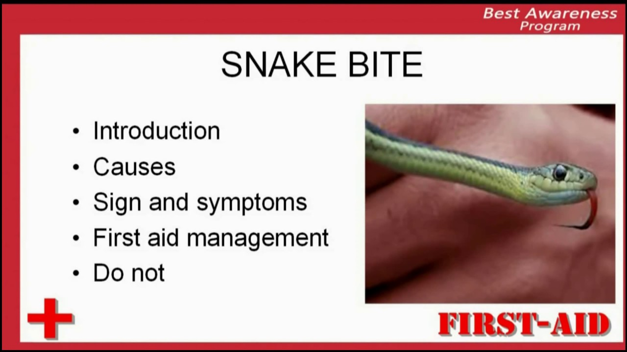Evolution of snake venom
