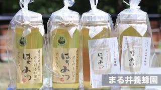 まるい養蜂園 | 自然豊かな岐阜県東濃地方のハチミツ【土岐市】
