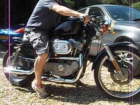 Harley Davidson For Sale Cafe Racer 883