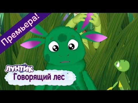 Говорящий лес 🌿 Лунтик 🌲 Новая серия | 491 | Премьера!