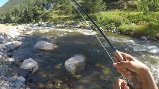 Fly Fishing Big Thompson River