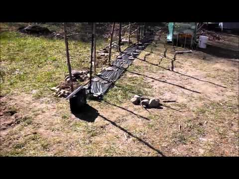 Setting Up Solar Electric Fence To Protect Chickens From Raccoons