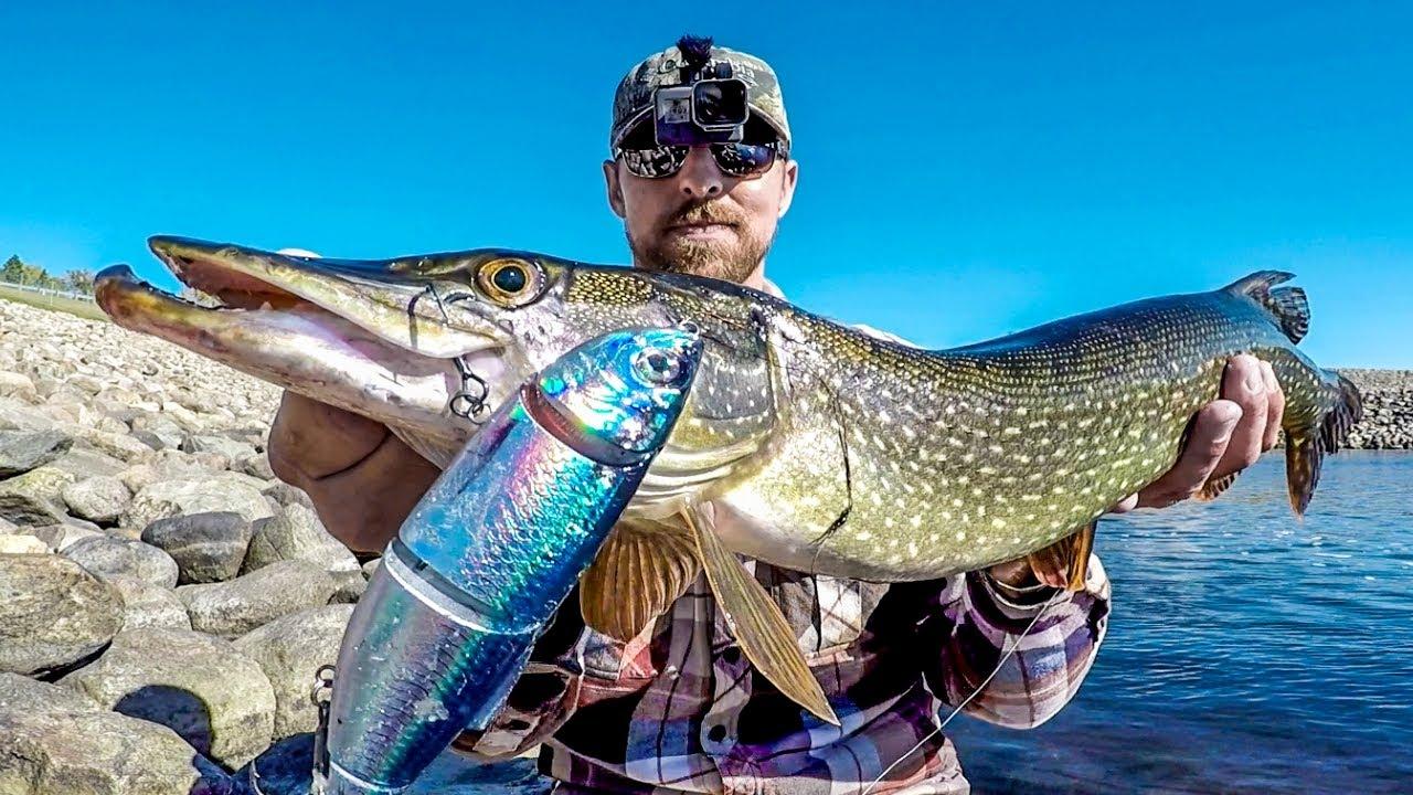 Fishing For Spillway Predators!
