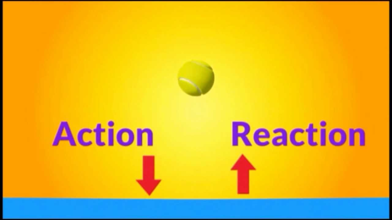 Newton S 3rd Law Of Motion Science Lesson Plans 6th Grade Science Teaching Science
