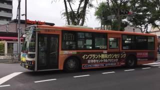 青梅街道営業所前の関東バスと西武バス Kanto Bus & Seibu Bus (2016.6)