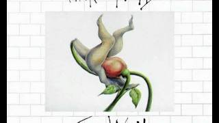 Backwards messages in progressive rock (Pink Floyd & ELO)