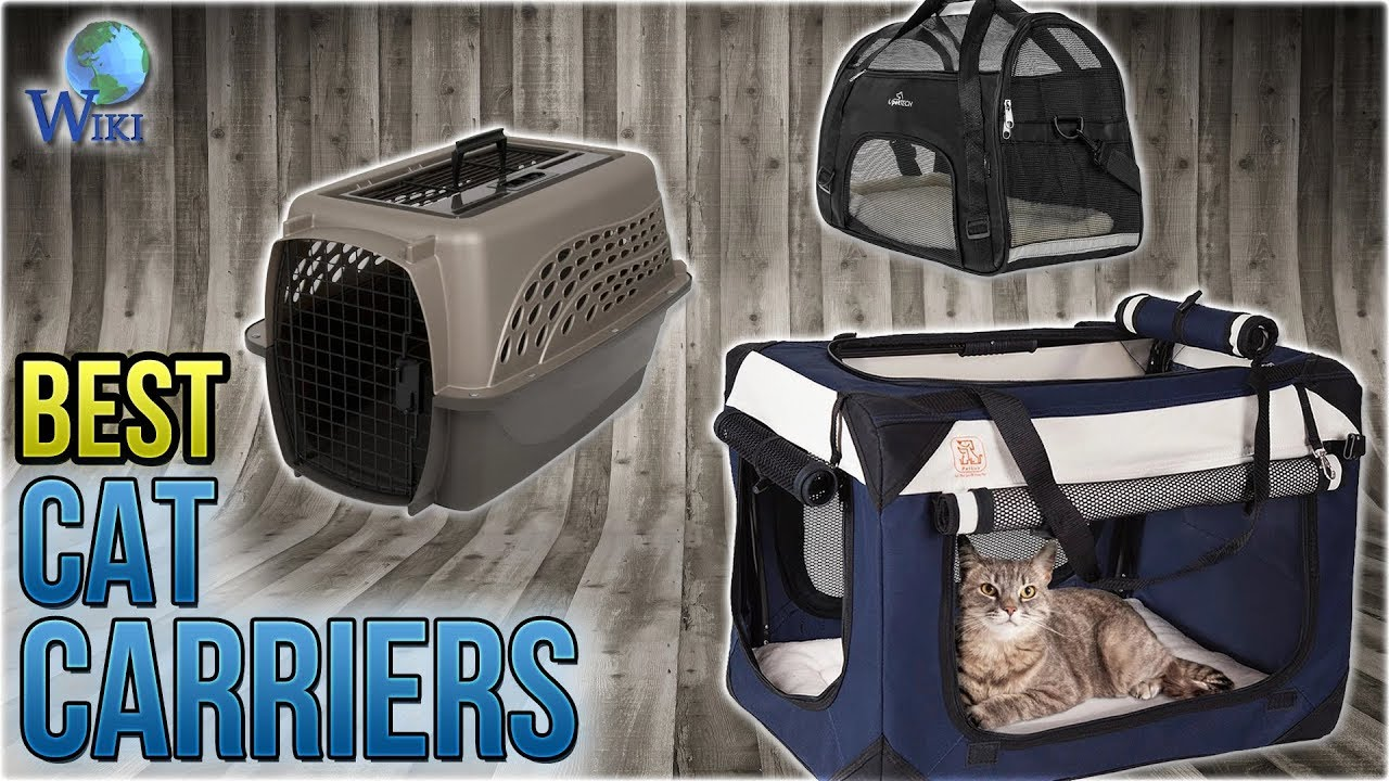 5647999d45 Top 10 Cat Carriers of 2019 | Video Review