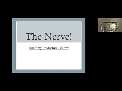 Do you have the nerve? M.E.S.A. Dissection