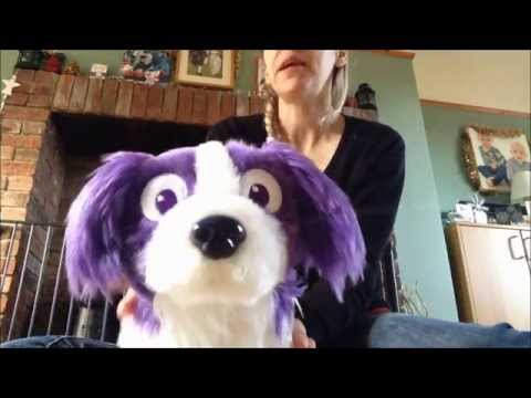 Russell The Dream Sheep Dog Review