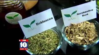 Souvia Tea Explains How to Make Elderberry Cough Syrup
