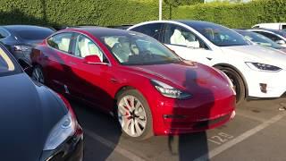 Tesla Performance Model 3 - P3d - Buena Park, Ca