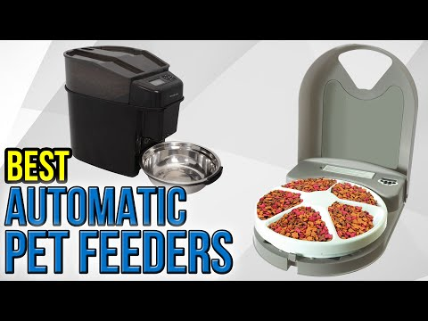 10 Best Automatic Pet Feeders 2017