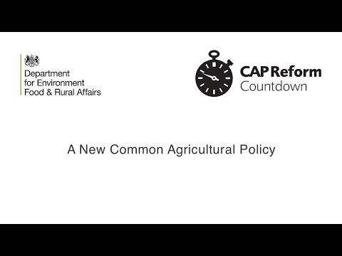 CAP Information Services -- an introduction