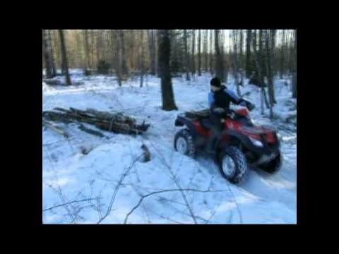 ATV Log Skidding (Honda Rincon)