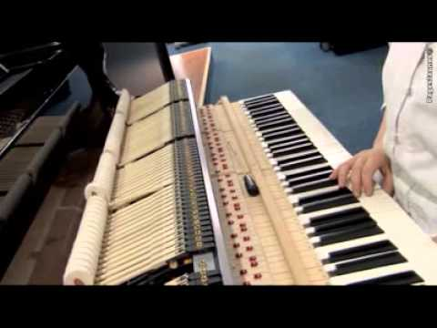 La Clé de Sol - Vente d'instruments de musique à Flers
