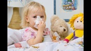 Аллергия на пыль, плесень, шерсть животных у ребенка/ Помощь и лекарства